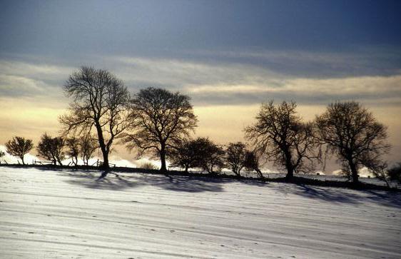 winter-10909